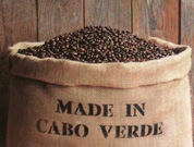 Cape Verdean coffee has high potential on international market, according to Luís Moreno