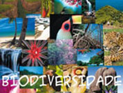 Documentary on Cape Verde's biological diversity financed through crowdfunding