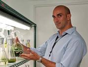 Cabo Verde vai aprofundar pesquisas sobre microalgas