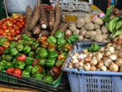 Equipa do Banco Mundial espreita sector do agronegócio em Cabo Verde