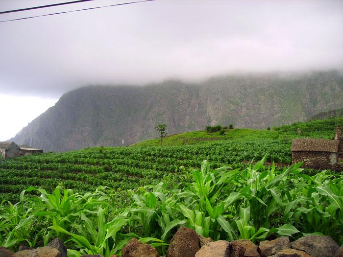 Resultado de imagem para chuvas bom para a agricultura